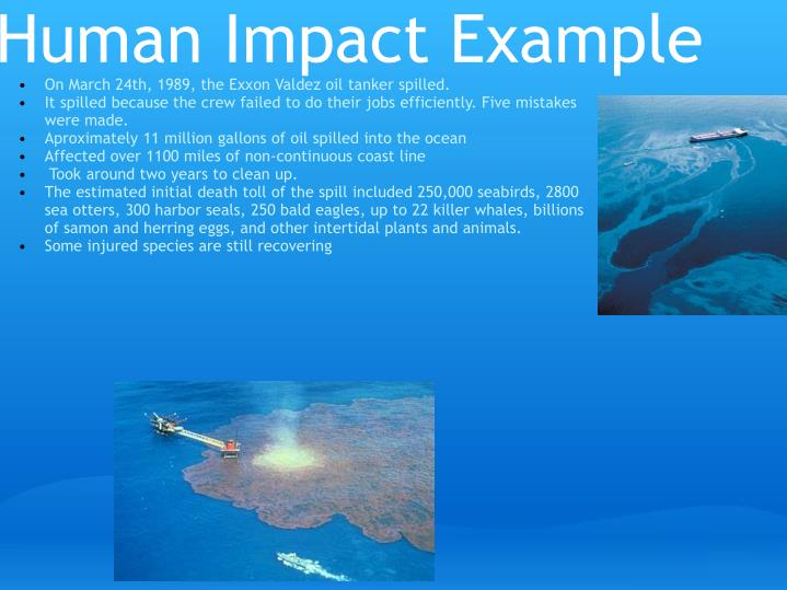 Human Impact Example