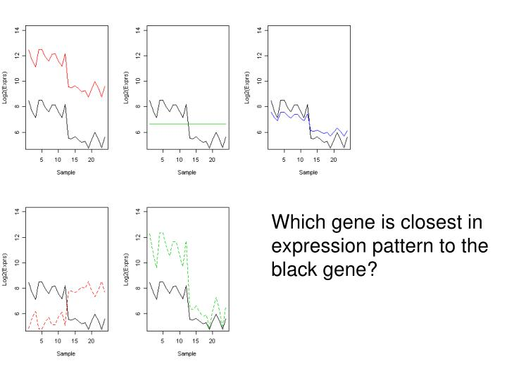 Which gene is closest in expression pattern to the black gene?