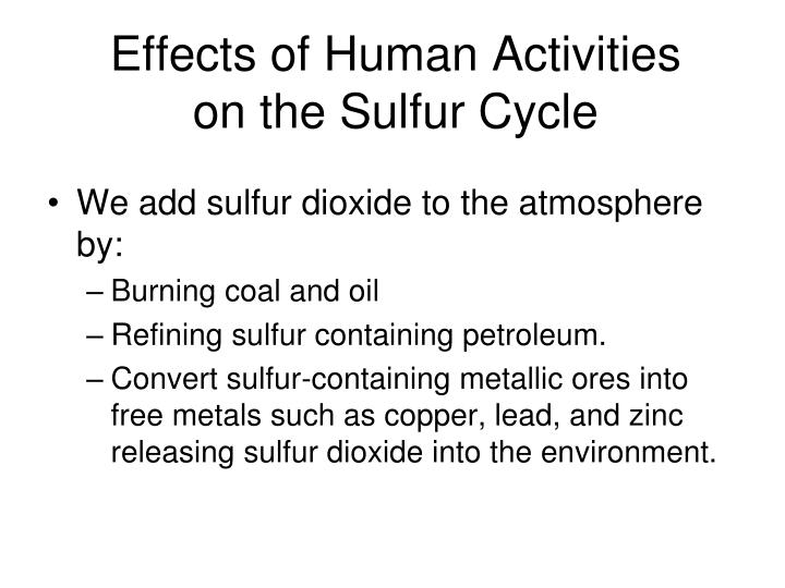 Effects of Human Activities