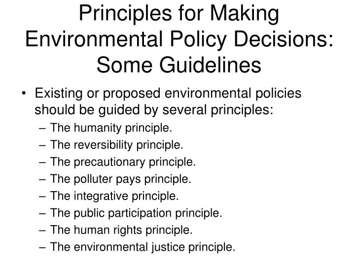 Principles for Making Environmental Policy Decisions: Some Guidelines