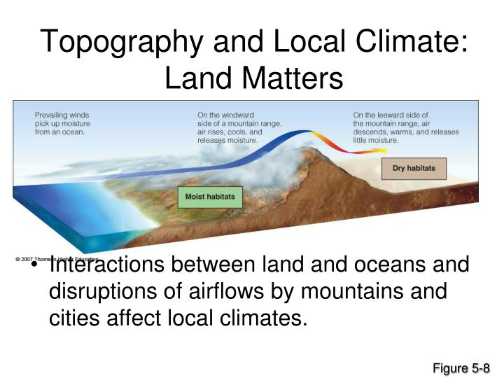 Topography and Local Climate: