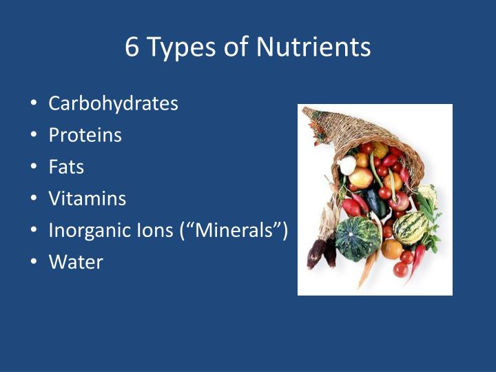 6 Types of Nutrients