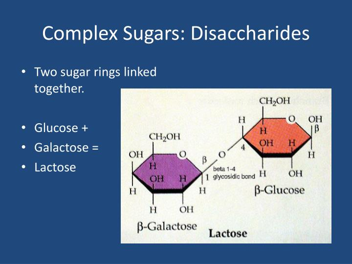 Complex Sugars: Disaccharides