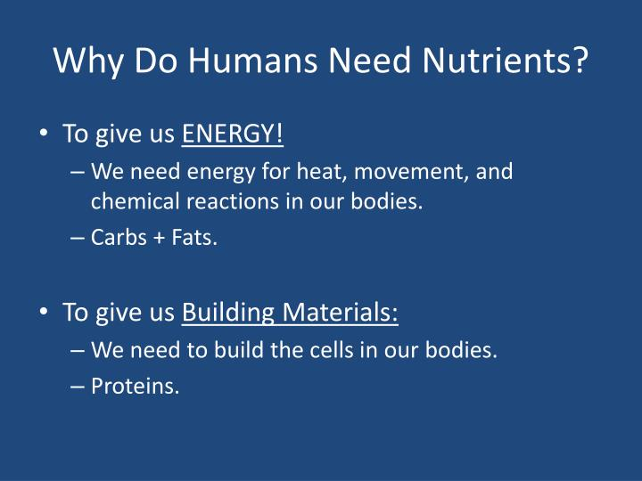 Why Do Humans Need Nutrients?