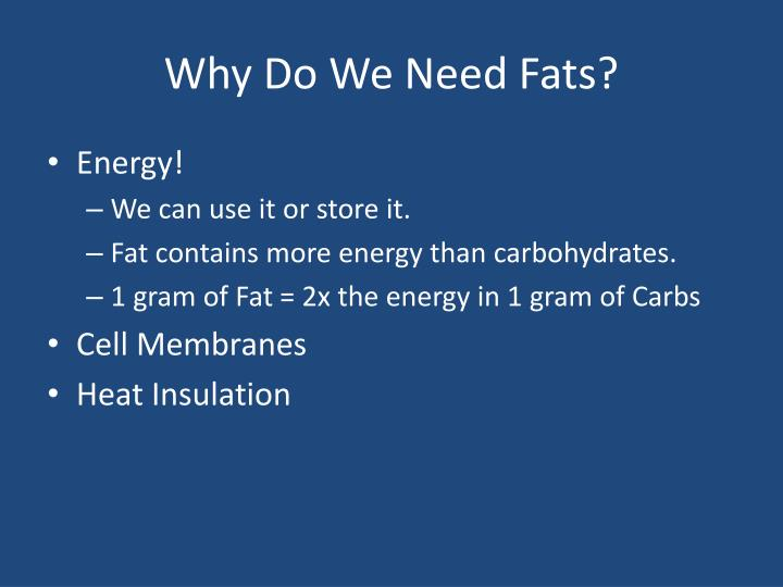 Why Do We Need Fats?