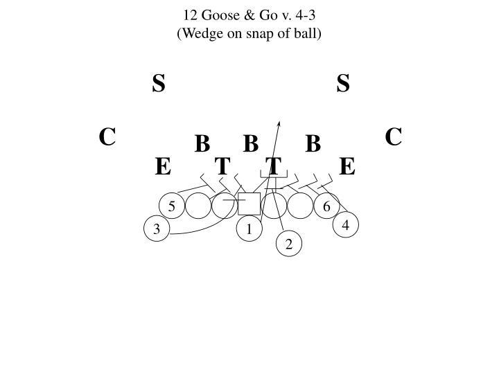 12 Goose & Go v. 4-3