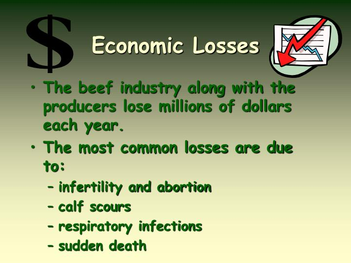 Economic Losses