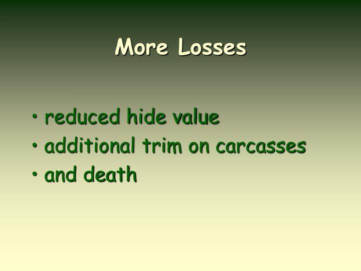 More Losses