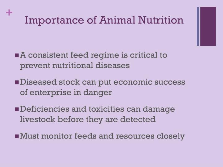 Importance of Animal Nutrition