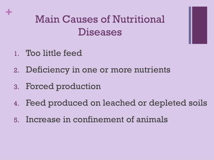 Main Causes