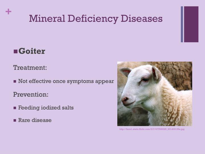 Mineral Deficiency Diseases