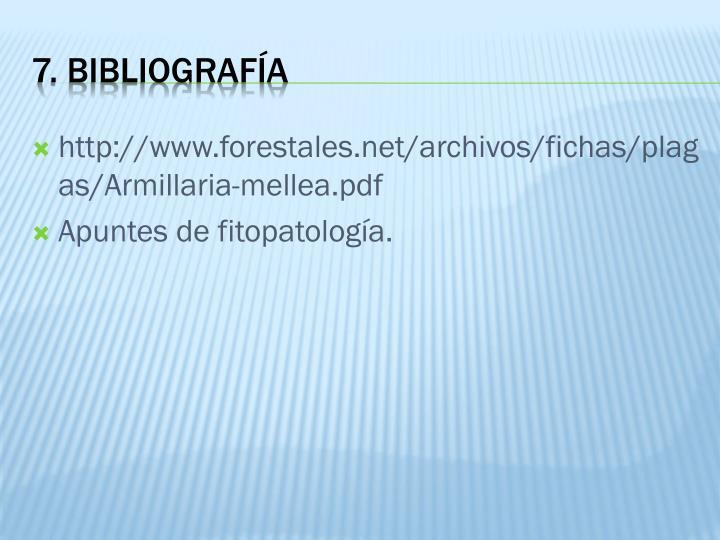 http://www.forestales.net/archivos/fichas/plagas/Armillaria-mellea.pdf