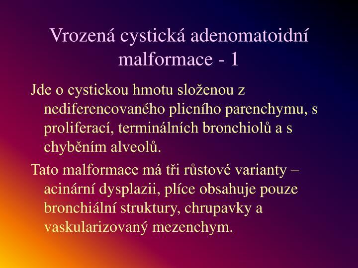 Vrozená cystická adenomatoidní malformace - 1
