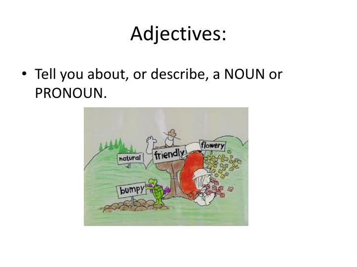 Adjectives: