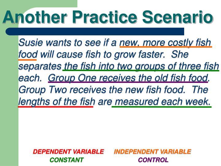 Another Practice Scenario