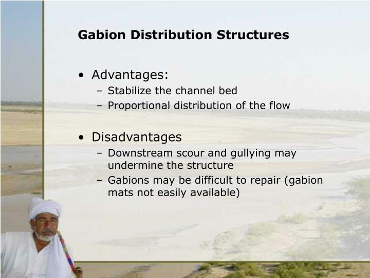 Gabion distribution structures