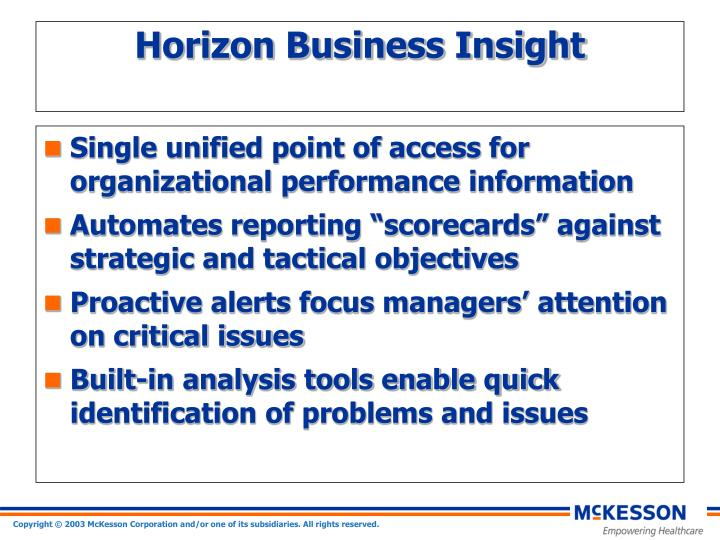 Horizon business insight1