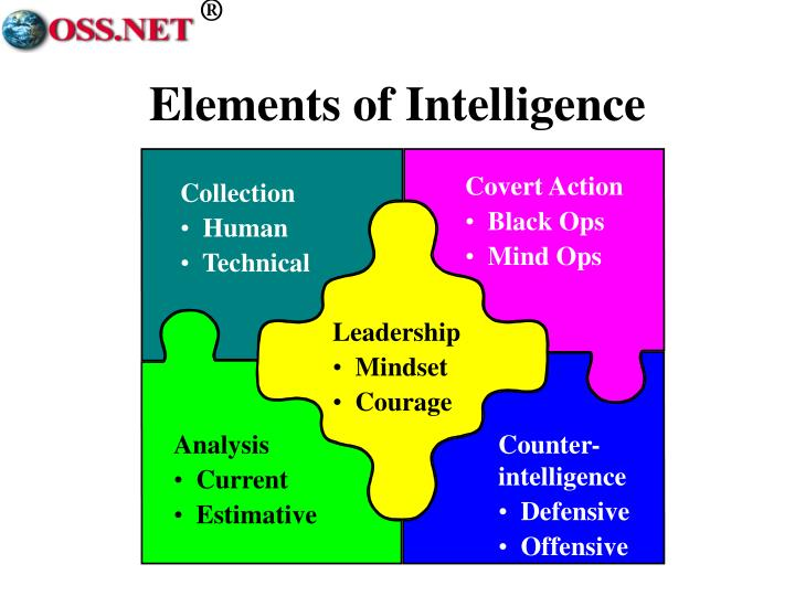 Elements of intelligence