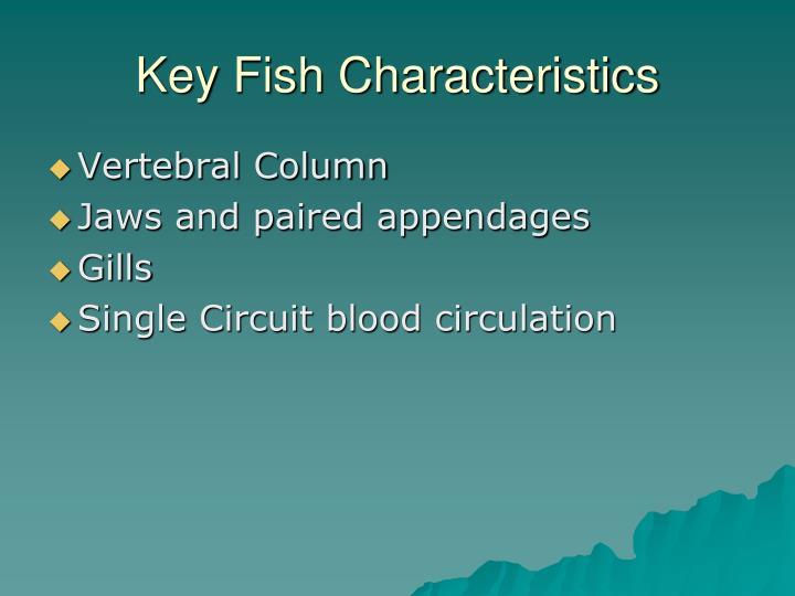 Key Fish Characteristics