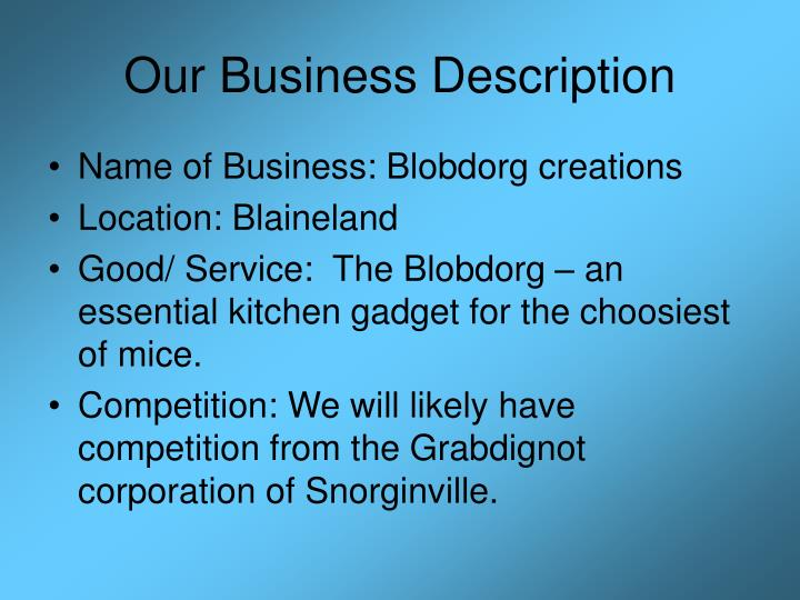 Our Business Description