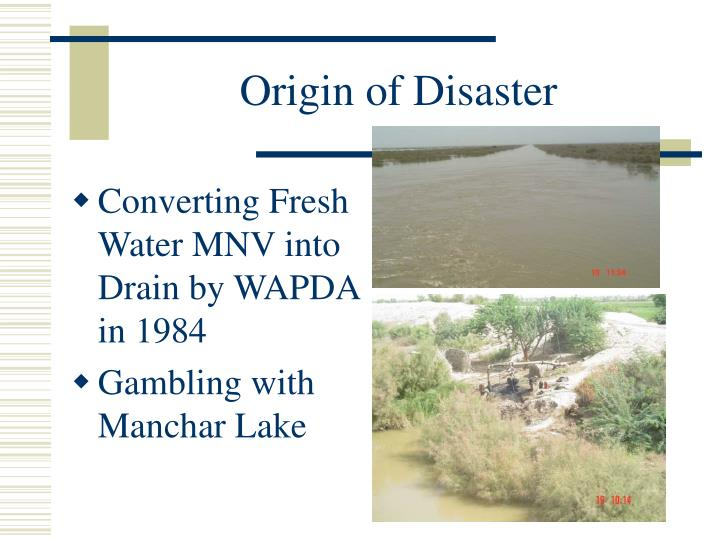 Origin of Disaster