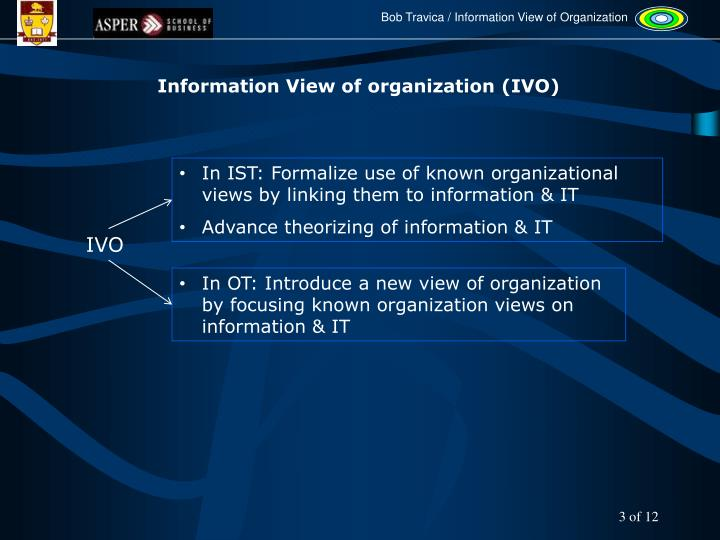 Information View of organization (IVO)