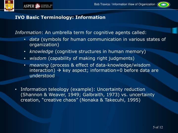 IVO Basic Terminology: Information