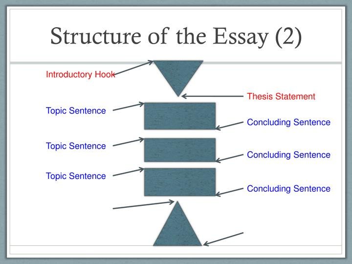 Structure of the Essay (2)