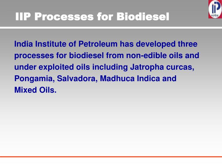 IIP Processes for Biodiesel