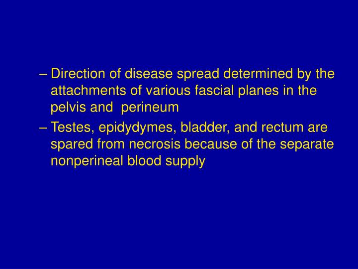Direction of disease spread determined by the attachments of various fascial planes in the pelvis and  perineum