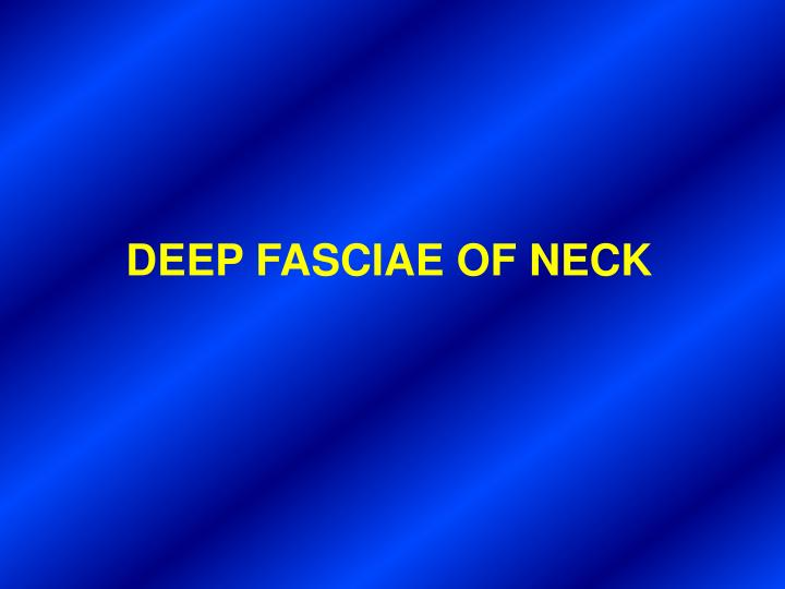 DEEP FASCIAE OF NECK
