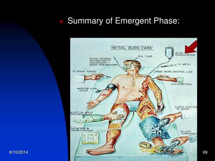Summary of Emergent Phase: