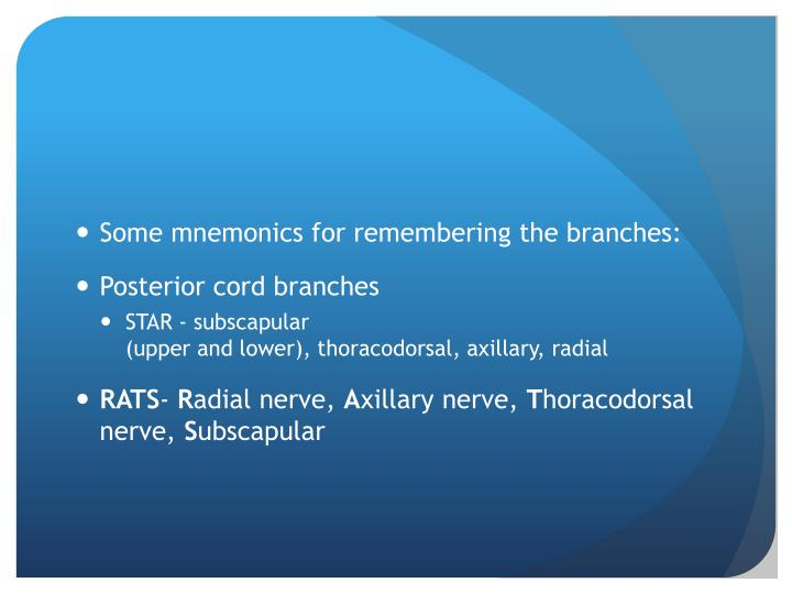 Some mnemonics for remembering the branches: