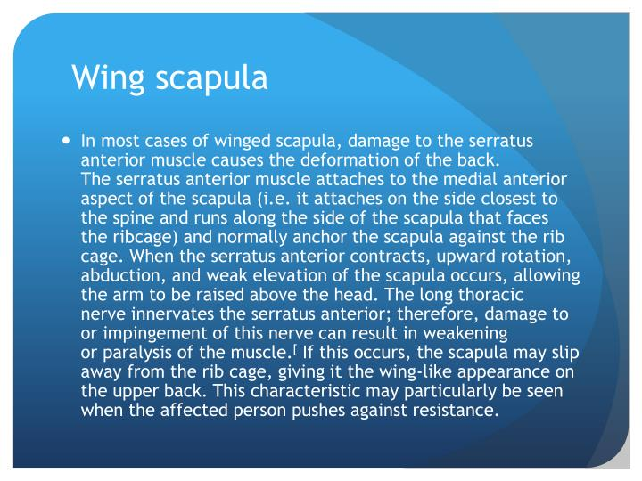 Wing scapula