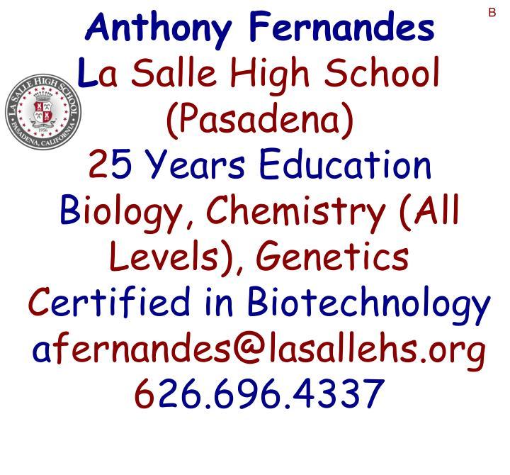 Anthony Fernandes