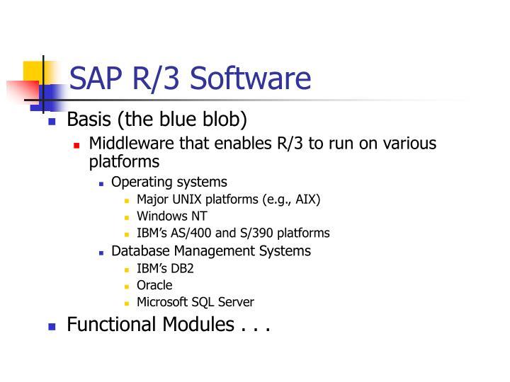 SAP R/3 Software