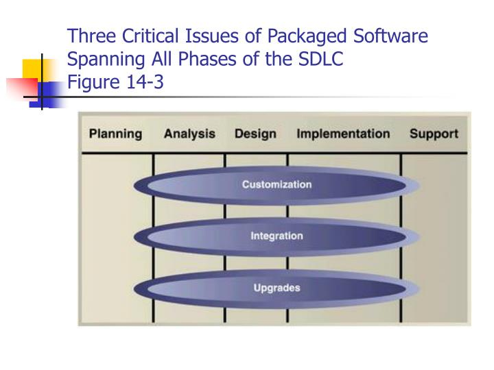 Three Critical Issues of Packaged Software