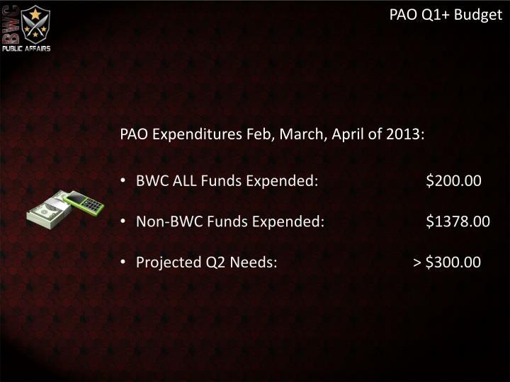 PAO Q1+ Budget