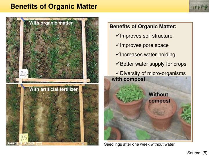 Benefits of Organic Matter