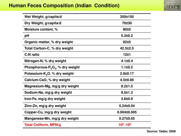 Human Feces Composition (Indian  Condition)