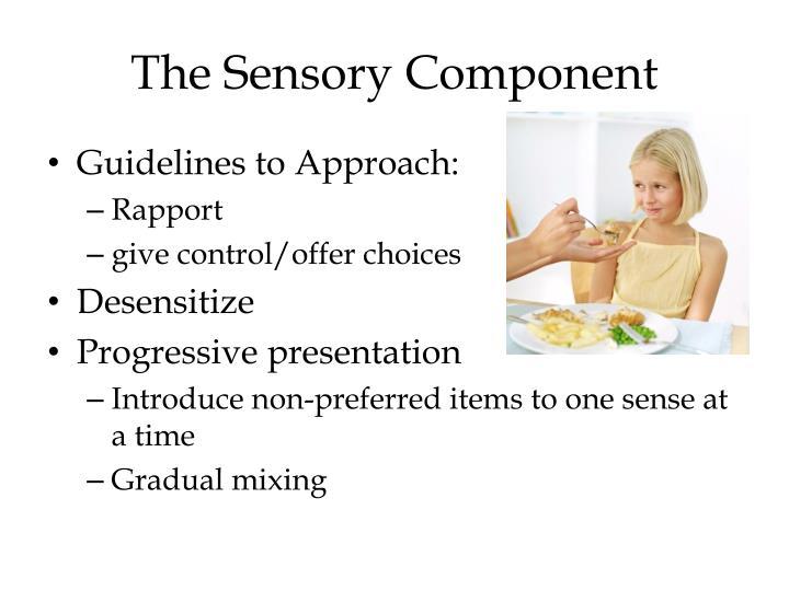 The Sensory Component
