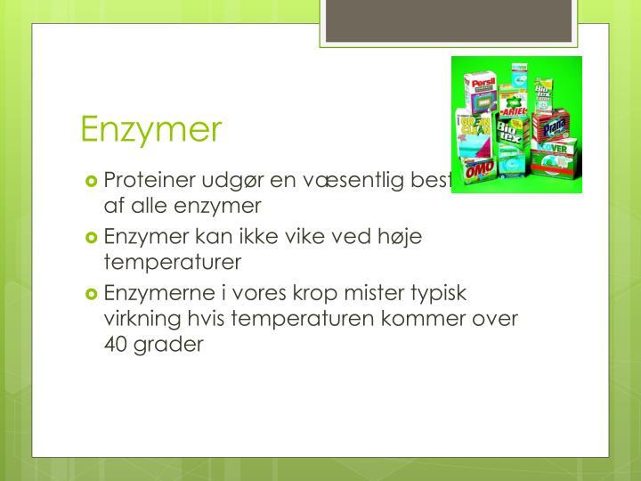 Enzymer
