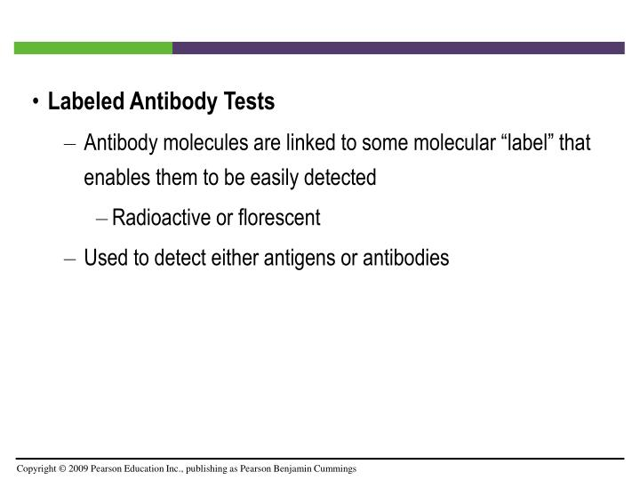 Labeled Antibody Tests