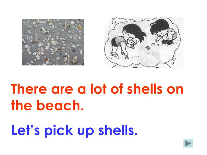 There are a lot of shells on the beach.
