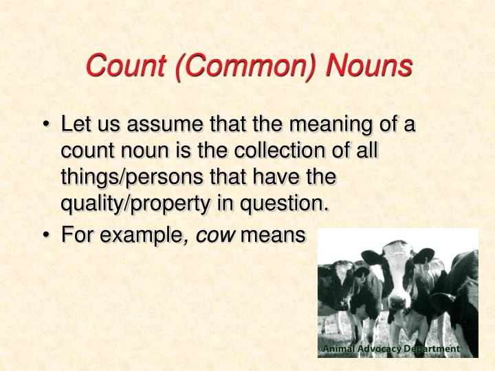 Count (Common) Nouns