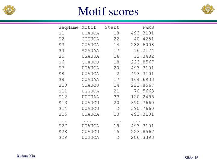 Motif scores