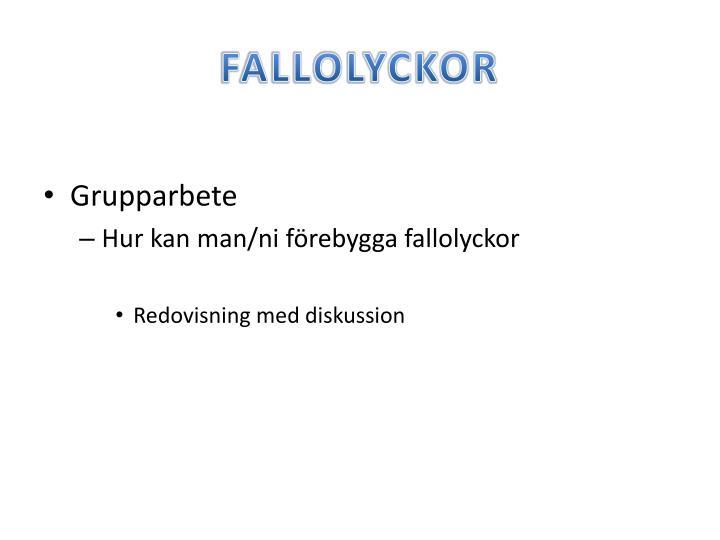 FALLOLYCKOR