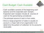 cash budget cash available