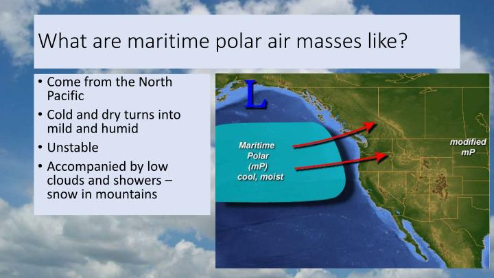 What are maritime polar air masses like?