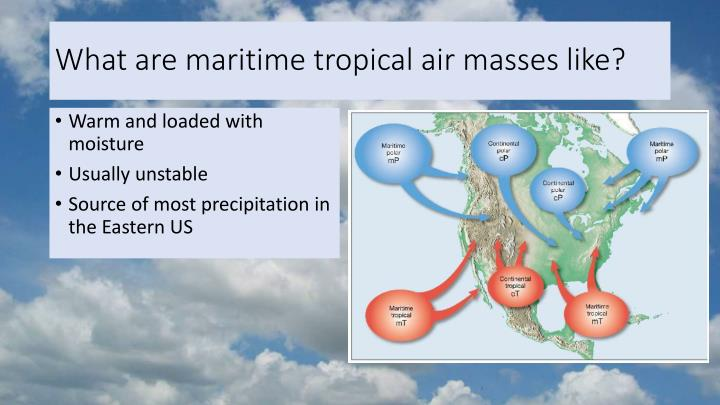 What are maritime tropical air masses like?